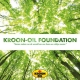 Kroon-Oil Foundation